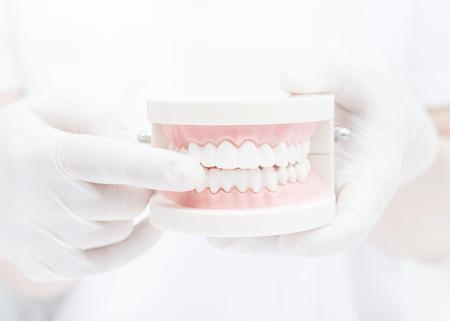 歯を残すための治療と予防